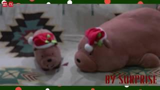 MINISO AU We Bare Bears Family- Merry Christmas!
